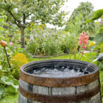 Is your rain barrel illegal?