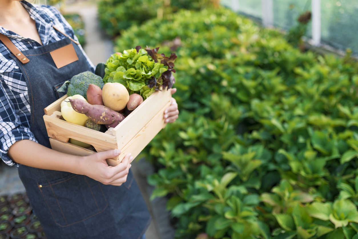 farmer with produce | eco-friendly diet
